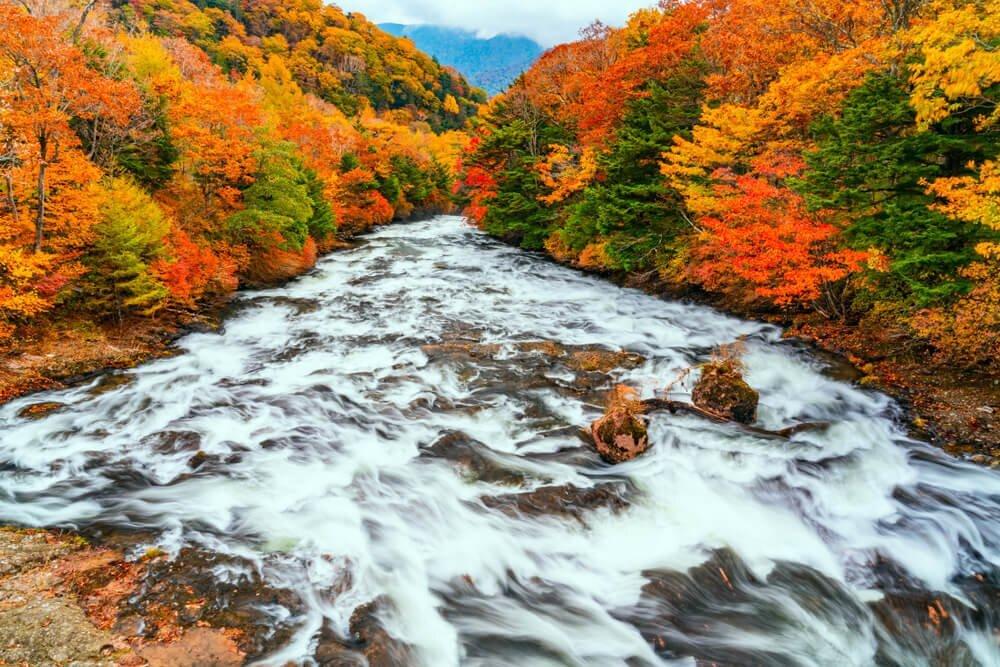 ため息が出るほど美しい。栃木の季節別絶景スポット8選! - PREMIUM OUTLETS TIMES