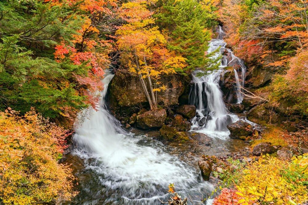 【必見!】栃木の絶景&おすすめスポット13選!定番から穴場まで - PREMIUM OUTLETS TIMES