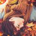 レディで大人で、色っぽくて。CANMAKEの新作コスメで作る秋のこっくりフェイス