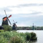 【オランダ手記】オランダで生活するうえで知っておくと安心なこと