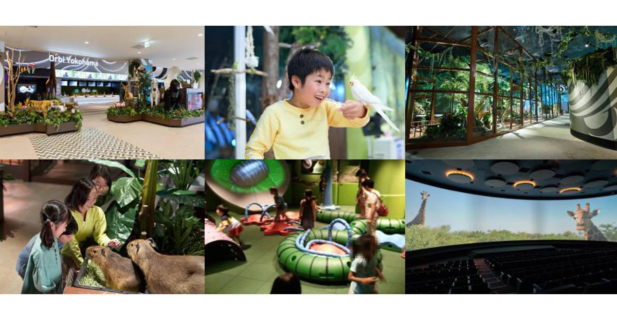 動物とふれあえる屋内型パーク「Orbi Yokohama(オービィ横浜)」