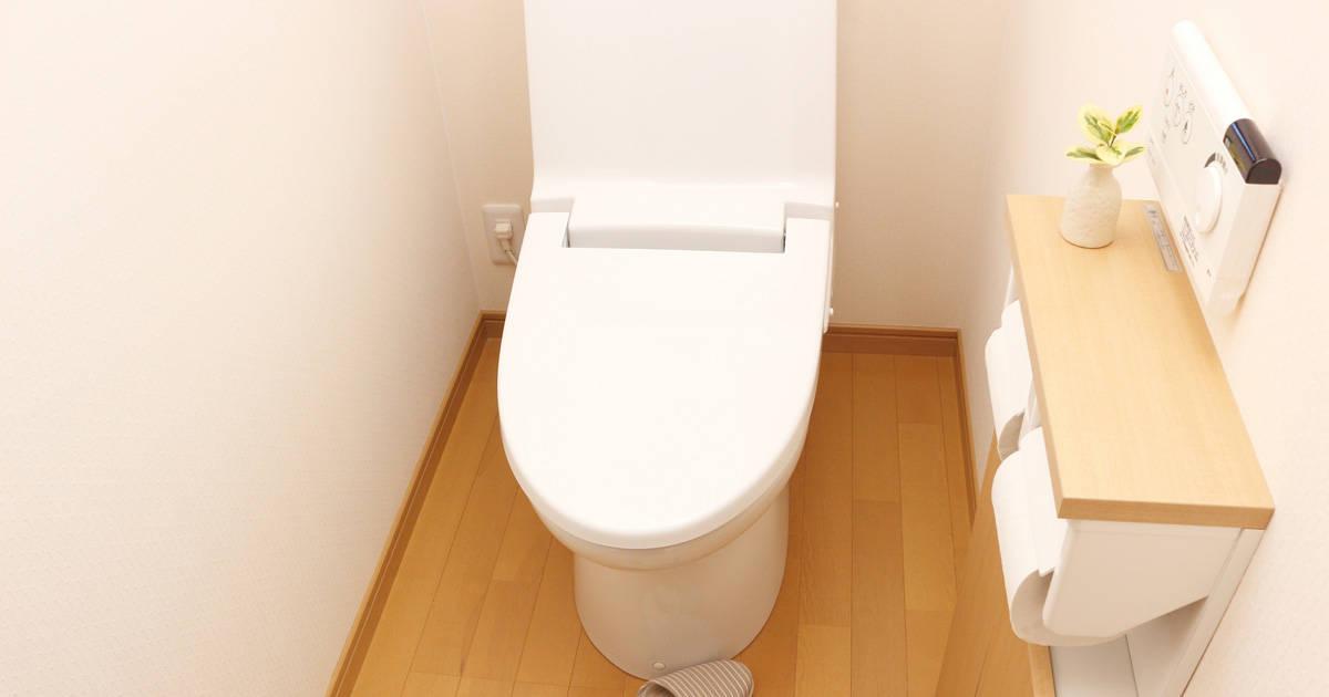 """トイレ掃除しても取れない""""あのニオイ""""の正体は""""壁""""にあり!?""""名誉トイレ診断士""""に聞くトイレ掃除の極意と真実"""