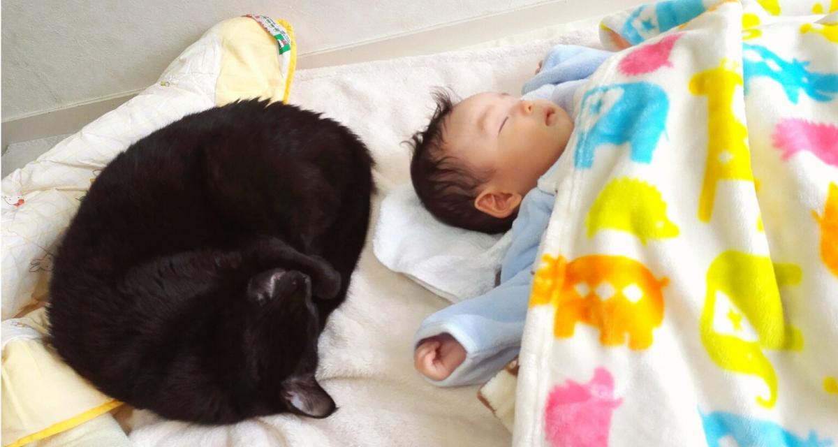 【専門家が解説】赤ちゃんの寝床は「ベッド」と「布団」どちらがいいの?