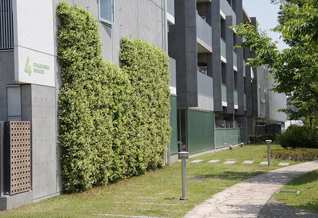 UR賃貸住宅,壁面緑化