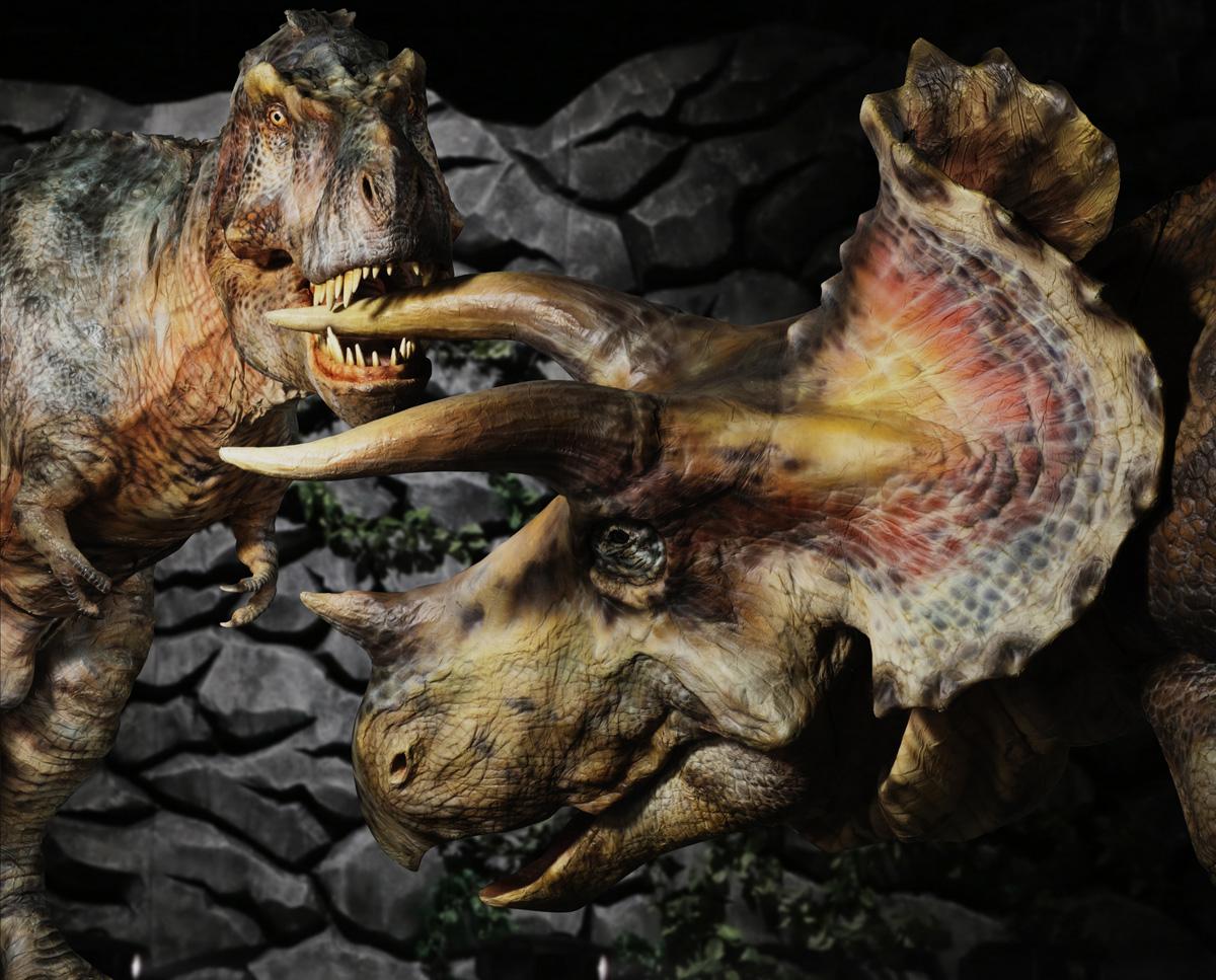 家men,夏休み,恐竜