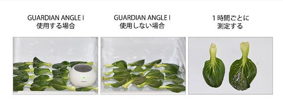 家men, Guardian Angle Ⅰ,冷蔵庫, 比較,農薬除去