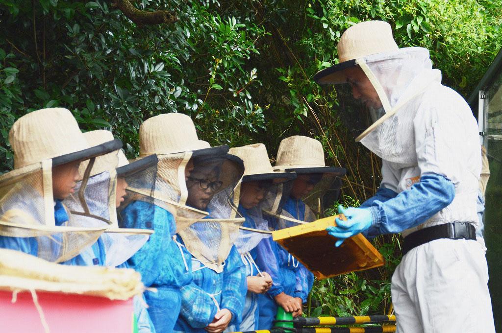 養蜂体験 みつばちのヒミツ,小田原フラワーガーデン,家men,イベント,9月,家族,親子,子ども