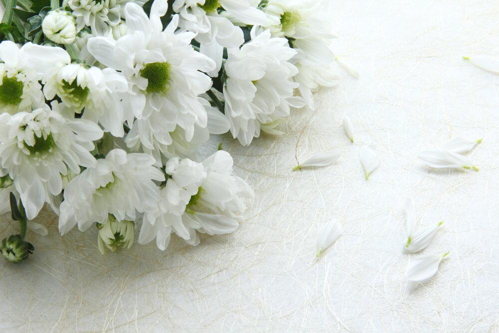 横たわった花束