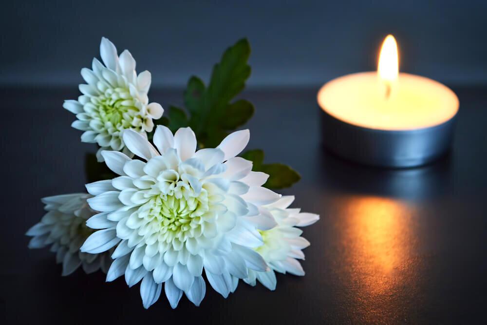 白菊とろうそく