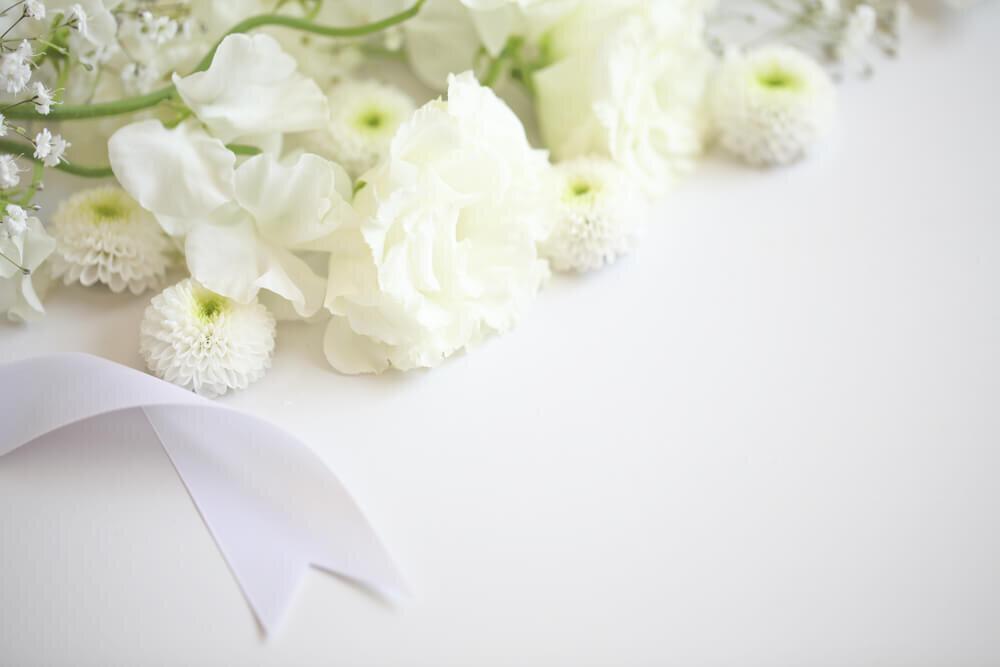 並んだ白い花