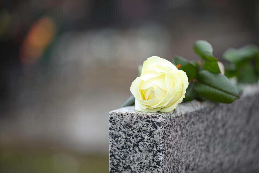 白い薔薇が置かれた墓碑