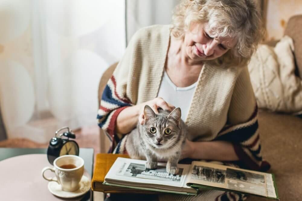 猫に触れる女性