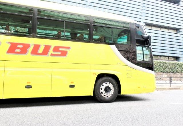 【はじめてのはとバス】黄色いバスでお馴染みの「はとバス」でお出かけしませんか?