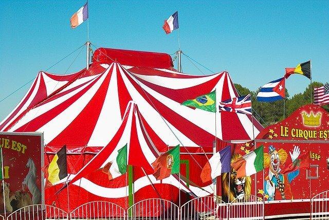 スリル満点の芸の数々を体感してみよう!はじめてサーカスを見に行こう!
