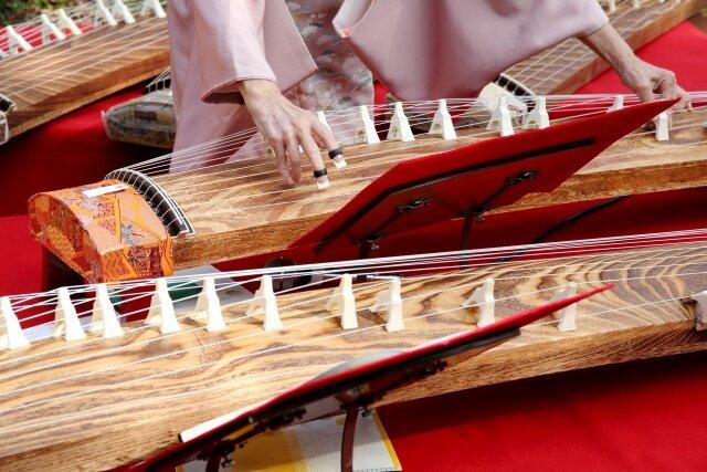 難易度が高く感じる楽器?初めてお琴を弾く時に知っておきたいこと