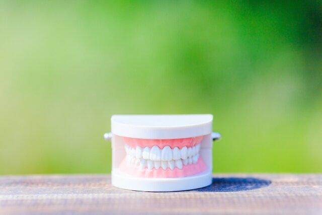 大人になってからでも間に合う!初めての歯列矯正で綺麗な歯並びを手に入れよう