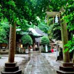 【東京】合格祈願🙏受験に効く神社とお守りをご紹介🙏買最後は受験の神様にお願いを🙏
