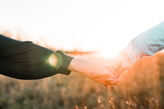 夕日が美しい草原で手をつなぐカップル