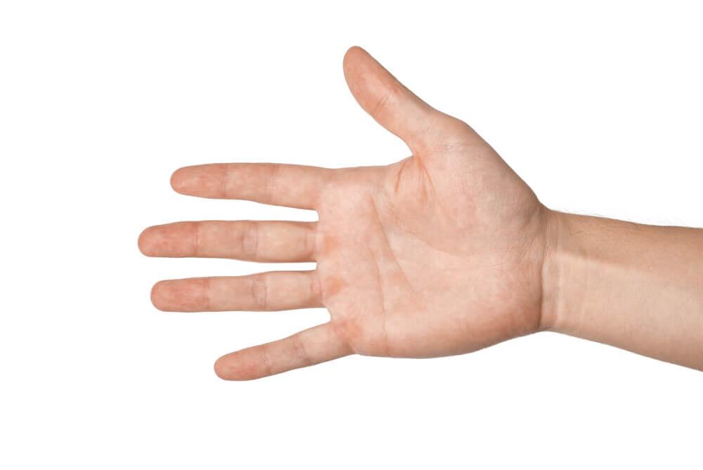 広げた手のひら