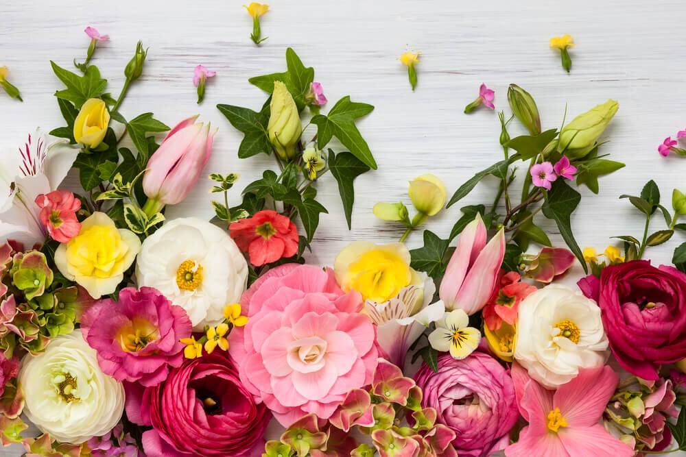 生き生きとした花