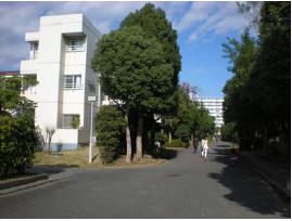 44 横浜市の郊外計画開発住宅地におけるエリアマネジメント手法開発に係る調査研 究