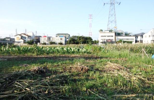 """生産緑地だけではない""""2022年問題"""""""