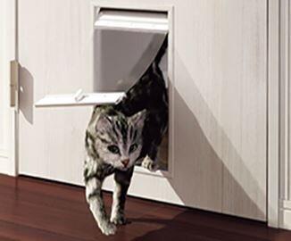 フロンティア/ネコ賃貸併用を販売 保護団体が物件を監修