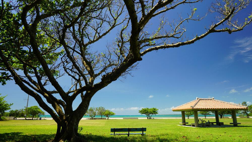 沖縄 公園