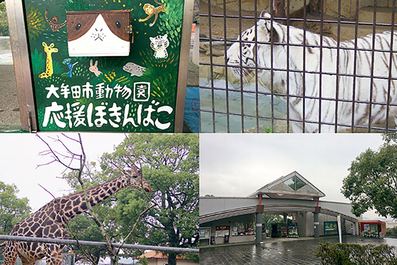 【大牟田市】「大牟田市動物園」vol.1 動物たちの幸せなくらしを追求する小さな動物園