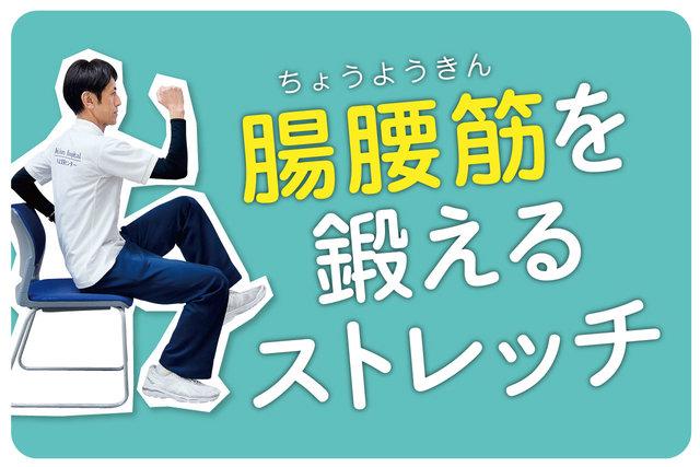 今日のストレッチ③「腸腰筋を鍛えよう!」
