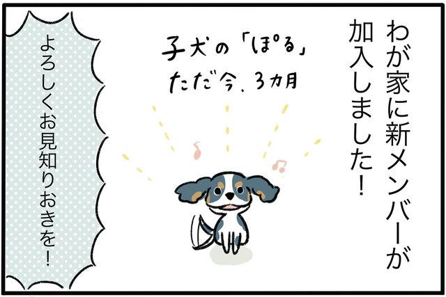 福岡市の隅っこで姉妹を育ててます!! Vol.16