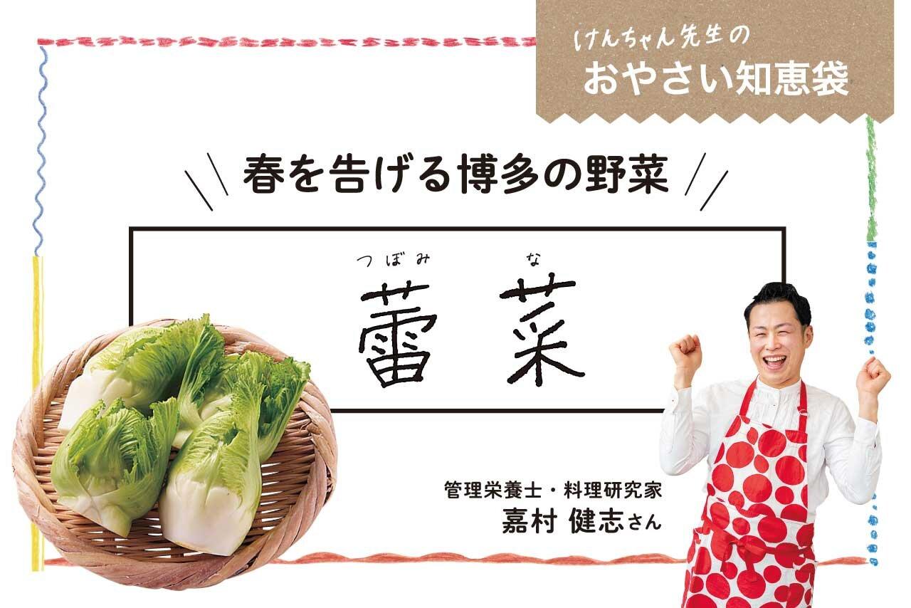 けんちゃん先生のおやさい知恵袋[蕾菜(つぼみな)]