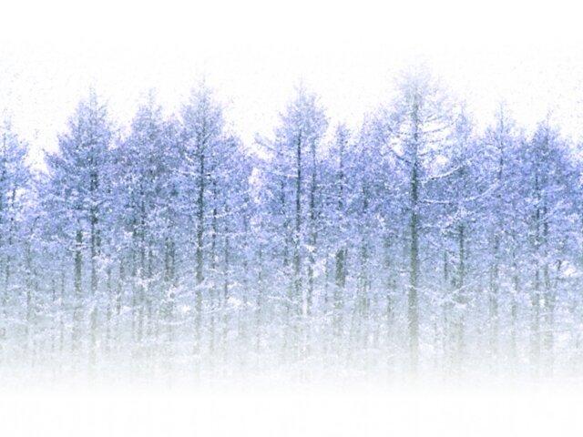 【ジュニアアスリート】冬のトレーニングの注意ポイント