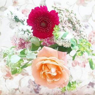 インスタ映えも♡【Bloomee LIFE ブルーミーライフ】でお花がある空間を楽しむ♡