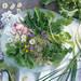 Instagramで今話題の【薬味】レシピ♡自宅で作る簡単おすすめ薬味♡