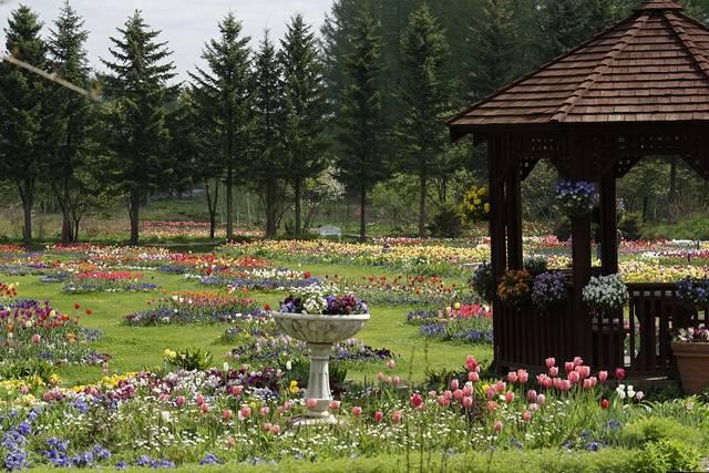 紫竹ガーデン(画像提供、北海道ガーデン街道事務局)