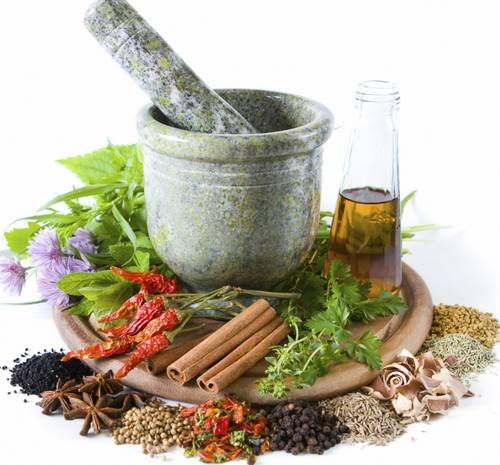Remedy Definition, Herbal Mediciine Picture Types Of Herbal Medicines And Usefulness To Be More Healthy And Environmentally Friendly Use Of Plants For Medicinal Purposes Leaves Roots Flowers Seeds Resin Root Bark ~ Types Of Herbal Medicines And Usefulness (31870)