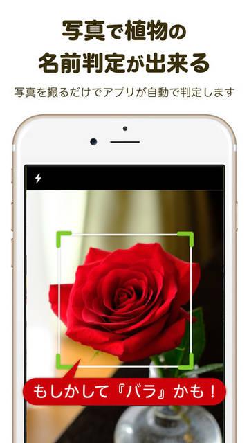 GreenSnap-観葉植物やガーデニングの写真共有アプリを App Store で (32114)