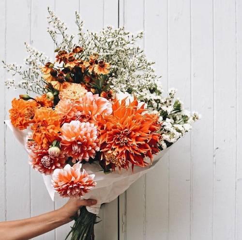 Image about flowers in P H O T O G R A P H Y by R O Y A L S (33014)