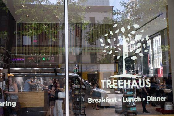 「treehaus nyc」の画像検索結果 | NYC | Pinterest (33237)