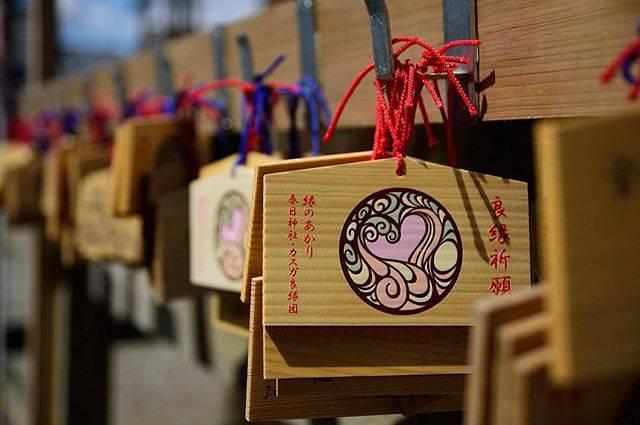 ShirouさんはInstagramを利用しています:「こんばんは。今日も1日お疲れ様でした😄 * 天気は良かったけど風が強かった福井県大野市でした😀 * 丸岡城桜祭りというプランもあったんだけど、人混みが嫌だな…という事で😓 * #良縁の樹 #絵馬 #icu_japan #ig_japan #wu_japan…」 (52851)