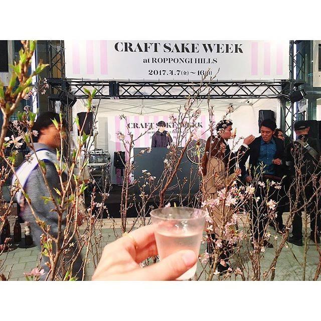 KumikoさんはInstagramを利用しています:「・ Cherry blossoms and music and delicious sake. ・ 今月7日からスタートした「CRAFT SAKE WEEK」 ・ 桜の枝の入った一升瓶が会場中に置かれ  DJブースで音楽が流れる中、美味しい日本酒で乾杯! ・ ・ #sake…」 (54433)