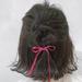 短めヘアさん必見!いつものヘアスタイルに飽きたら取り入れたい春の簡単ハーフアップ