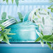 ロクシタン《ヴァーべナ フローズンシリーズ》7月25日より限定発売中!酷暑の夏を、ひんやり感広がる全3アイテムと共に乗り越えて