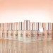 エチュードハウス《ダブルラスティング セラムファンデーション》12月1日発売!美容液級の保湿力と独自技術で、1日中乾燥知らずなうるツヤ肌に。