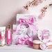 Laline(ラリン)《日本限定デザイン チェリーブロッサム シリーズ》3月1日発売!幸せを呼び寄せるピンクカラーをまとったサクラデザイン