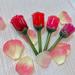 母の日のギフトに♡【ラビオッテ】の新作「フロマンスリップカラーシャイン」に注目!
