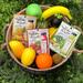 《ピュアスマイル》野菜や果物の本格エキスがたっぷり♡新作の「ベジフルエッセンスマスク」が好評発売中!
