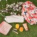 《My Little Box(マイリトルボックス)》2020年3月のテーマは「FRENCH PICNIC」!春コスメとピクニックグッズがIN