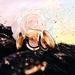 ディオール《プレステージ ル クッション タン ドゥ ローズ》持ち運びに便利なスリムサイズに変身!バラのような美しい艶肌をお直し時にもゲット